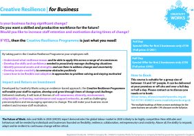Creative Resilience for Business Programme